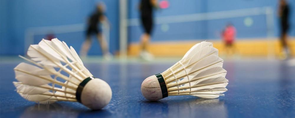 choisir le meilleur volant de badminton